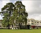 Sofitel Palace Hotel